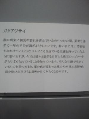 Ca3j0979_2